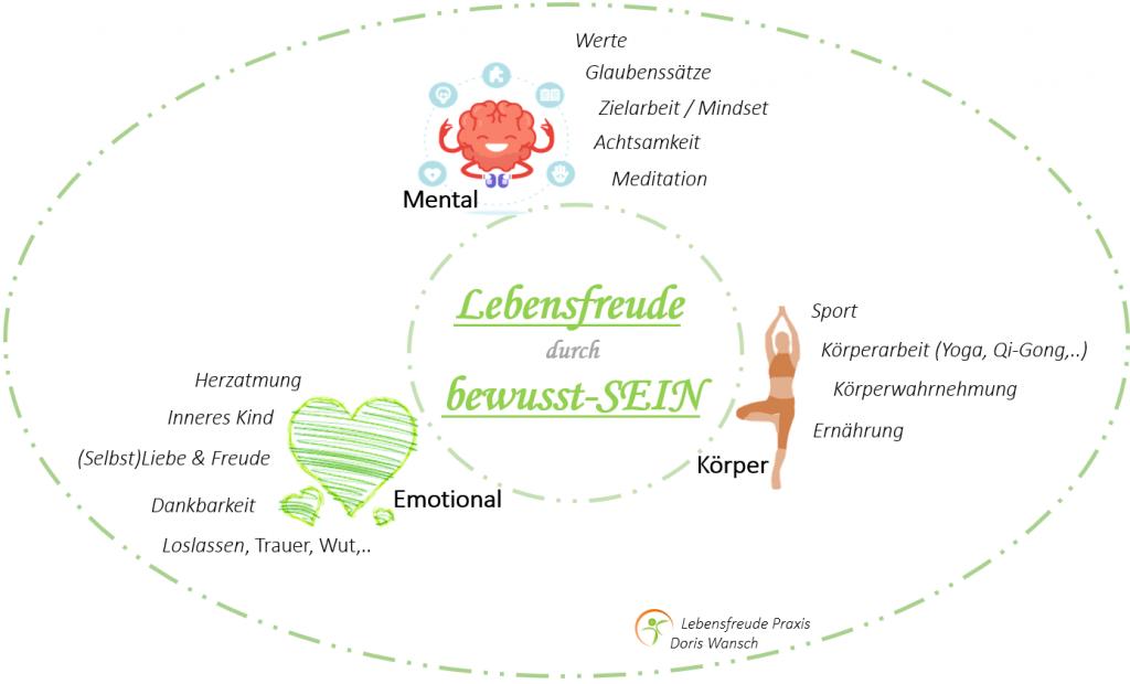 Bewusstseinstraining, Einzeltraining Linz, Mentaltraining, Energetik, Zusammenhang Körper-Emotionen-Mental/Gedanken, Lebensfreude Praxis-Doris Wansch